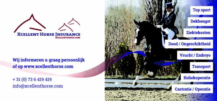 Xcellent Horse Insurance: insure your EDS auction horse